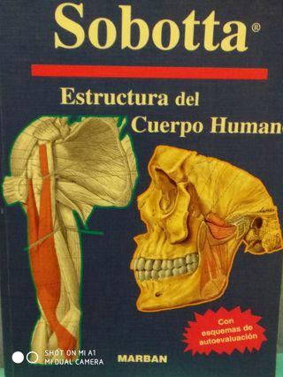 Libro de Anatomía Sobotta