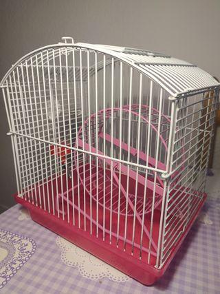 Jaula hamster pequeños roedores