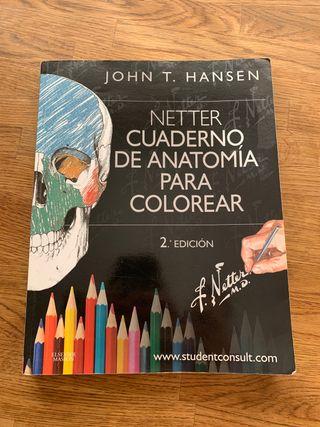 Libro anatomia para colorear