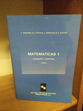 Matemáticas 1, economía y empresa, teoría