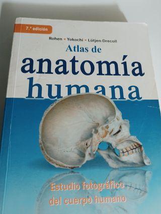 Atlas de anatomía Rohen - Yokochi - Lütjen