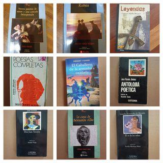 Novelas clásicas
