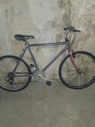 bici hibrida