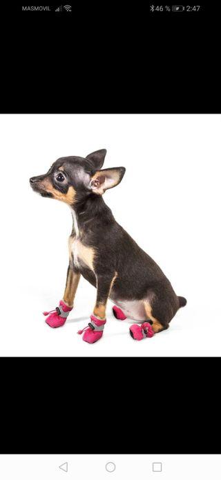 botas de nieve para perro