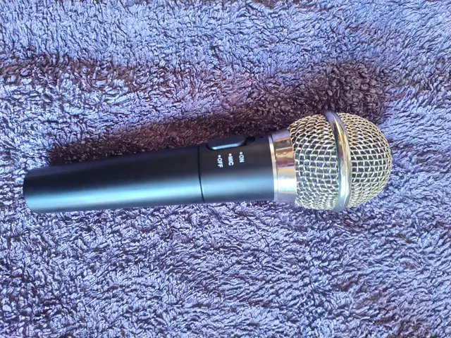 Micrófono inalámbrico PEGA Karaoke 2 en 1 Wii PS3