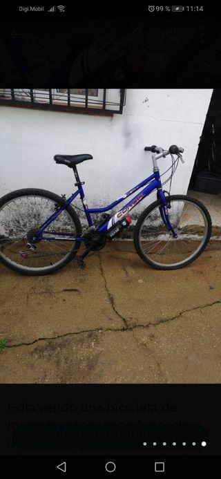 Bicicleta de montaña conor