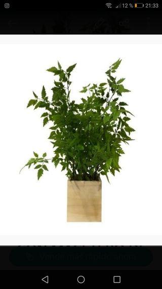 planta artificial 50 cm con macetero de madera