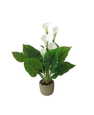 Planta artificial Araceae de 56 cm