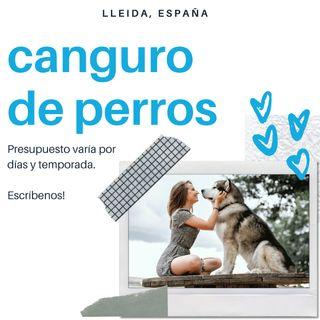 Canguro/Cuidador de perros y otras mascotas