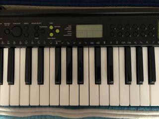 Órgano/piano