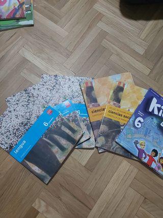Lote de libros 6 de primaria