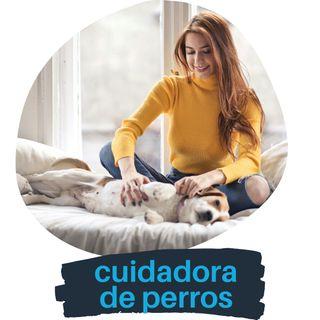 Cuidador de perro - Canguro de perro Lleida