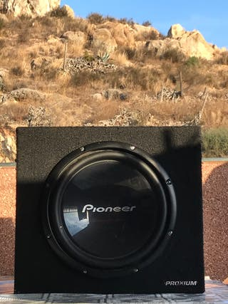 Subwoofer pioneer Champion series 12""