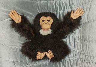 mono chimpancé furreal tiger hasbro interctivo