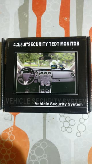 security tedt monitor