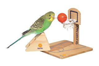 Juego de baloncesto para pájaros