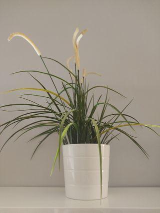 Planta artificial + maceta Ikea