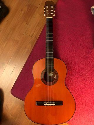 Dos Guitarras españolas