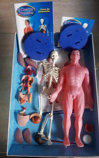 Kit Conoce tu Anatomía (Educa)