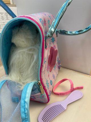 Perrito con su bolsa trasporting y acces