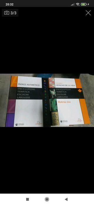 Enciclopedia temática escolar laorusse