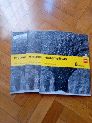 Libro de Matemáticas 6 de Primaria SM