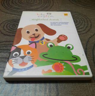 Pelicula DVD, Baby einstein