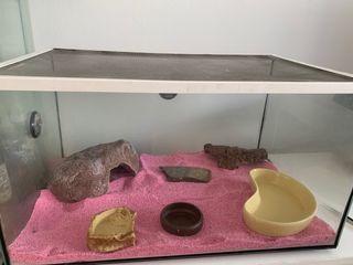 Terrario para reptiles con accesorios 56x37x31