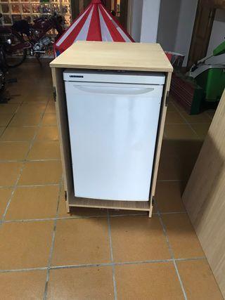 Mini Nevera - Congelador 50€