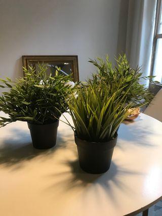 3 plantas artificiales de ikea