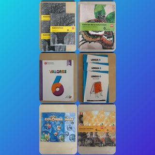 Libros 6° primaria Seminuevos