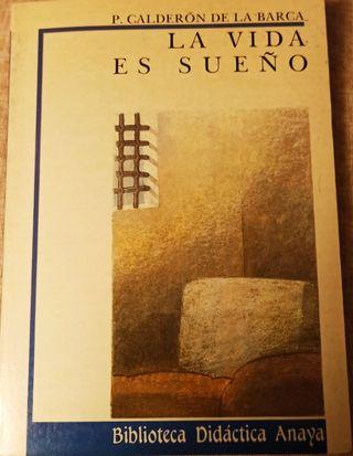 Libro La vida es sueño (P. Calderón de la Barca)