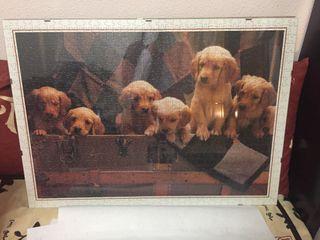 Puzzle 1000 piezas perritos