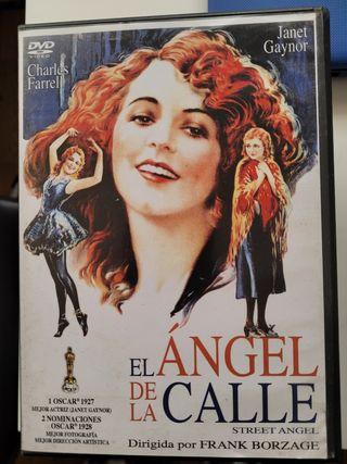 El ángel de la calle. dvd