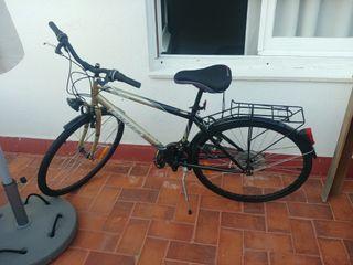 Bicicleta Colouer