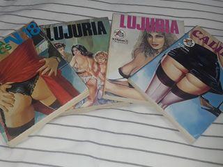 Comics adulto 50€ El lote. 15€c/u sueltos.