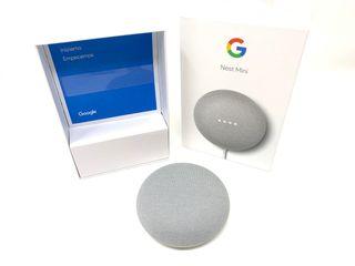 Google Nest Mini (gris)