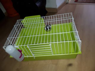jaula grande conejo