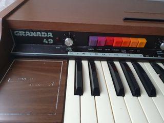 Organo Fesma