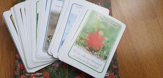 Semillas de ángel. Libro + cartas.
