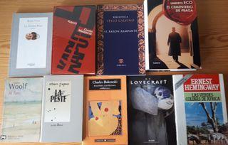 Lote 17 novelas