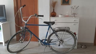 Bicicleta de paseo Vintage.