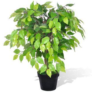 Planta enana artificial de ficus en maceta, 60 cm