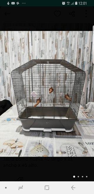 Jaula para pájaros de diseño