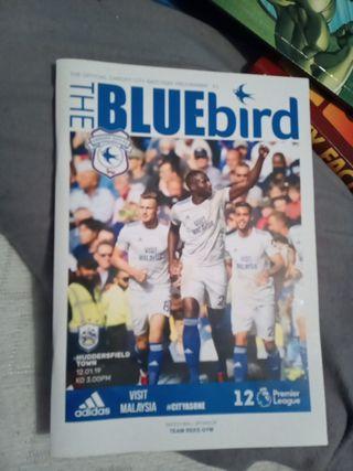 Cardiff City book
