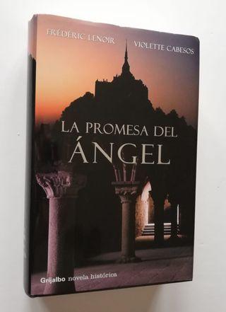 La promesa del ángel (Frédéric Lenoir-Violette Cab
