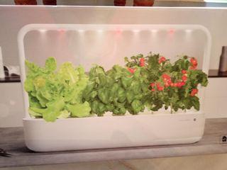 Click and grow smart garden 9 kit jardín