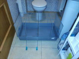 jaula grande roedor