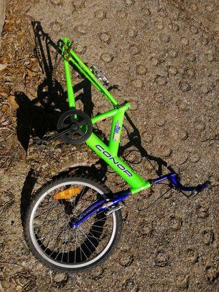 cuadro conor con cadena y rueda