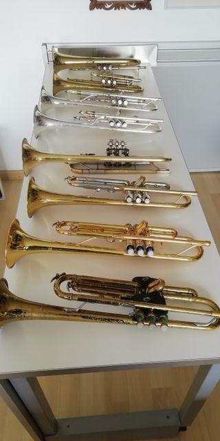 Pack de 8 Trompetas